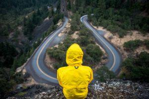 Career path finder