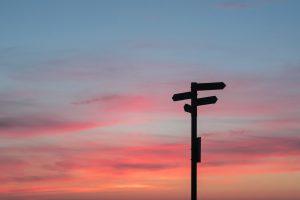 choosing a career path